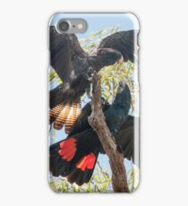 Red-tailed Black-Cockatoo iPhone Case/Skin