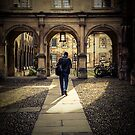 Walk Through by AndrewBerry