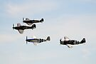 Eagle Squadron Tribute Formation by Nigel Bangert