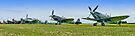Flightline Panorama - Duxford 26.05.2013 by Colin  Williams Photography