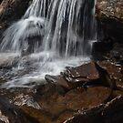 A Splash Of Scottish Water by Carla Maloco