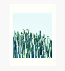 Cactus V2 #redbubble #home #lifestyle #buyart #decor Art Print