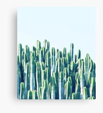 Cactus V2 #redbubble #home #lifestyle #buyart #decor Canvas Print