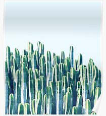 Cactus V2 #redbubble #home #lifestyle #buyart #decor Poster