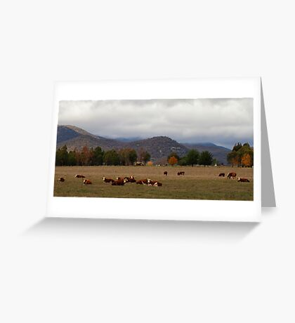 Rural Scene near Bright Greeting Card