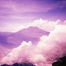 Purple Haze - Lomo by chylng