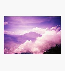 Purple Haze - Lomo Photographic Print