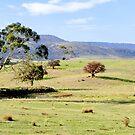 Glenora Landscape by Anthony Davey