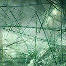 Actinolite needles in quartz by Egor Gavrilenko