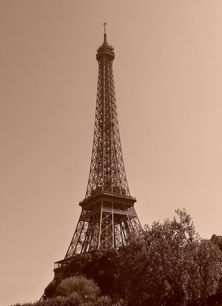 Eiffel Tower Paris  by Faye Masters