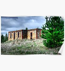 Ruins in Mt Crawford Forest Poster