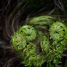 Dance of the fiddleheads by StoneAge