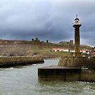 Safe Harbour by partridge