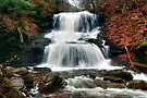 Tuscarora Waterfall's Drenching Spray by Gene Walls