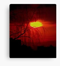 Red Willow Canvas Print