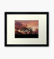 Devon Sunset Framed Print