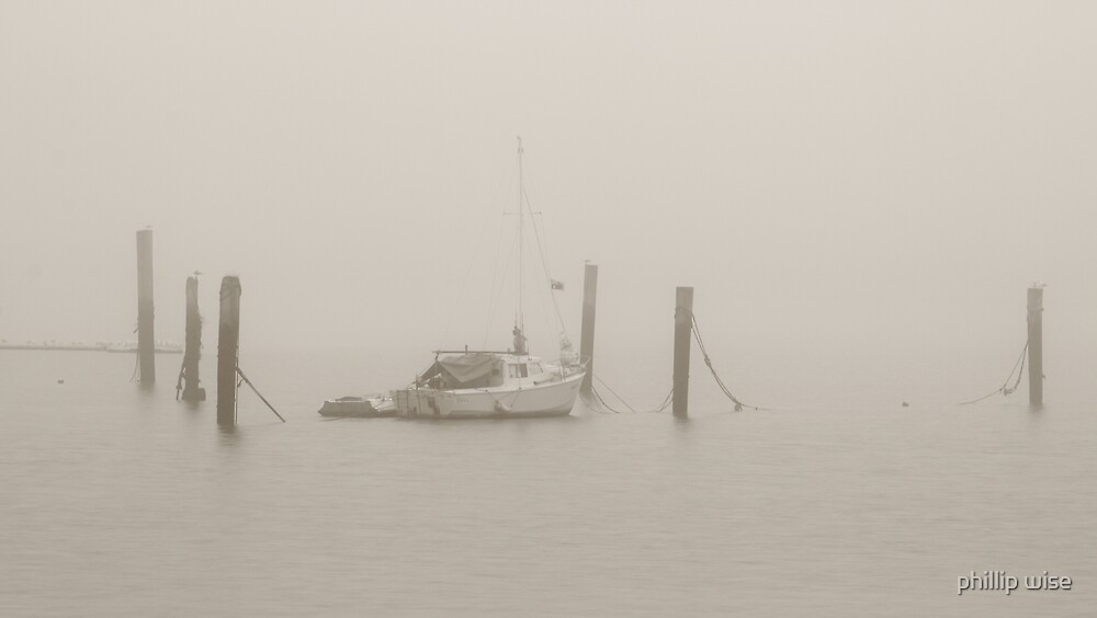 Foggy Tamar by phillip wise
