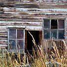 Who Broke the Window? by Deborah Clearwater