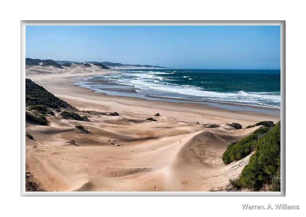 East Coast near Kenton on Sea by Warren. A. Williams
