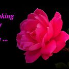 Thinking of You...greeting card by RoseMarie747