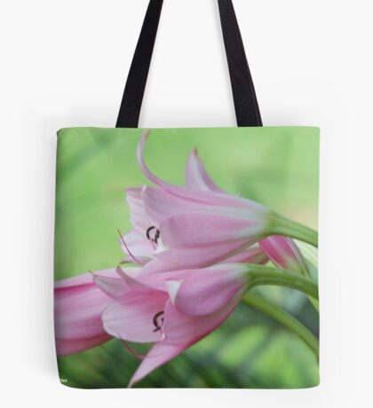 UNTOUCHED BEAUTY - the Indigenous Belladonna Lily - DIE BELLADONNA LELIE  Tote Bag