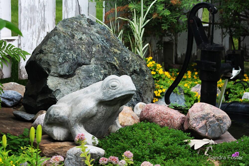 Frog Garden Scene  by Sandra Foster