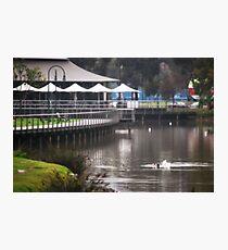 Winter's Quiet, Lake Weeroona Tea House Photographic Print