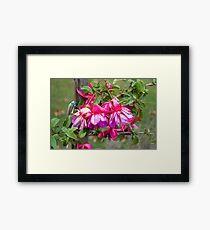 Pink V Purple Framed Print
