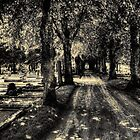 Kikas cemetery by Madsen1981