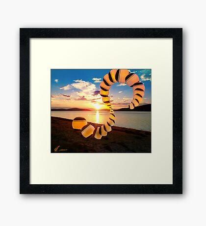 Fractal in the nature - 4 Framed Print