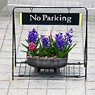 No parking sign by Cebas