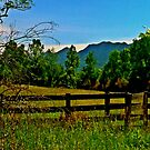 The Old Fence, The Ancient Mountains, and The Wild Field by Kieran Rundle