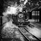 Puffing Billy - Emerald  by Christine Wilson