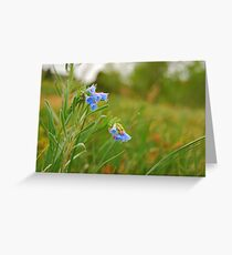Red, Blue, and Green Greeting Card
