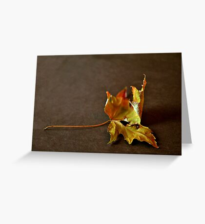 Moriens Greeting Card