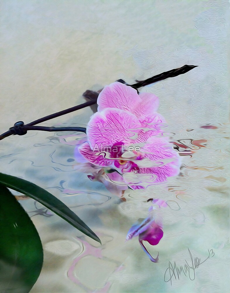 Wild Orchid by Alma Lee