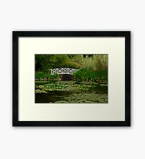 Hobart water-lilly garden Framed Print