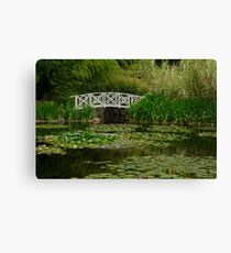 Hobart water-lilly garden Canvas Print