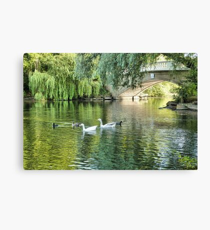 Stanley Park Boating Lake. Canvas Print