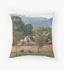 Kangaroos and their Joey -Vacy, NSW Australia Throw Pillow