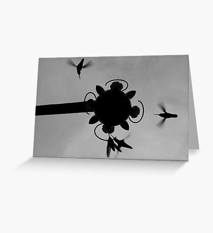 Hummingbirds #3 Greeting Card