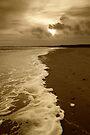 Sepia Shoreline by Nigel Bangert
