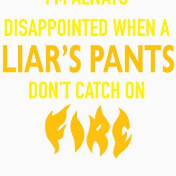 Liar, Liar Pants on Fire by johnpicha
