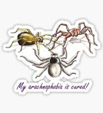 My arachnophobia is cured! Sticker