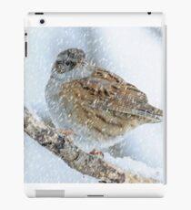 winter bird scene iPad Case/Skin