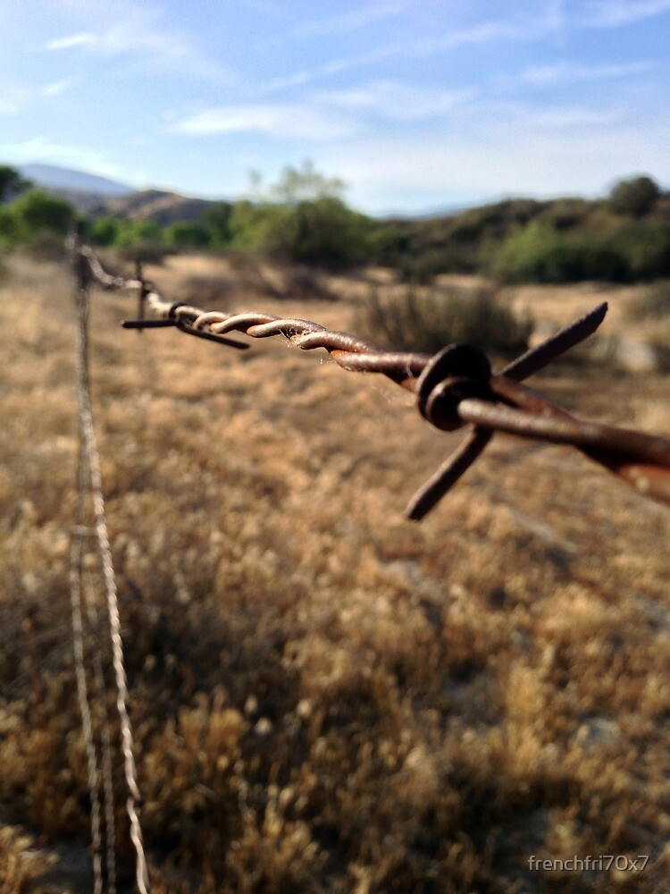 The Barbwire by frenchfri70x7