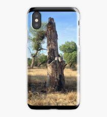 Stumpy iPhone Case