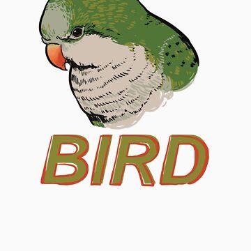 BIRD - Quaker Parrot (Green) by Sadgi
