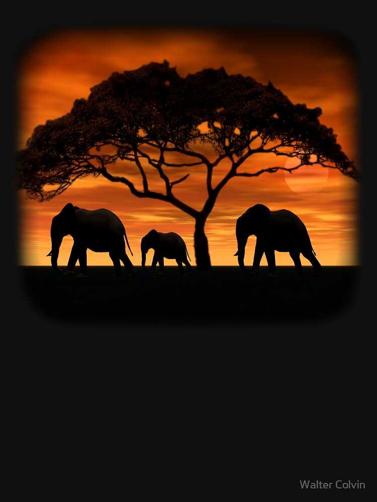 Elephant Sunset by Skyviper