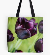 Queen of the Night Tulips Tote Bag